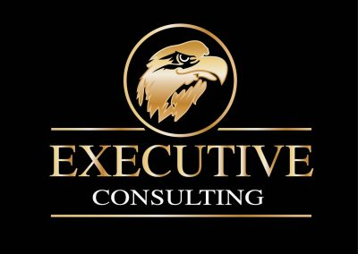 Executing Consulting Branding by Eastern Web Designers